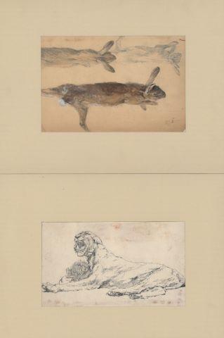 Ensemble de 3 feuilles d'études d'animaux : Lionne allongée, Lièvres, Ours brun