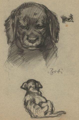 Études de moineaux (au recto) et de chien (au verso