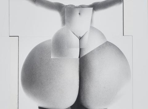 Sexe féminin