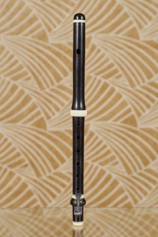 Flute piccolo