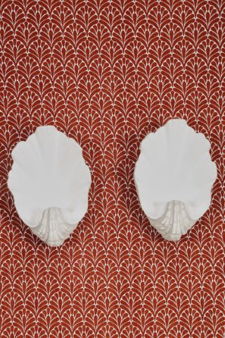 Paire d'appliques coquillages