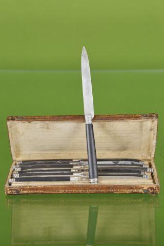 6 couteaux à fruits