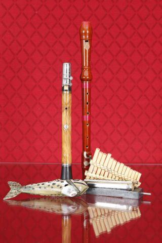 5 instruments à vent