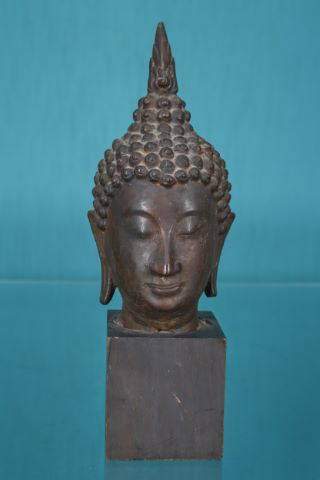 Tête de Bouddha