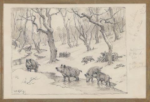 Horde de sangliers, cerfs et biches