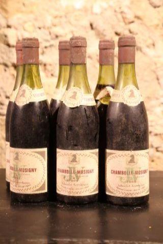 6 bouteilles 1969