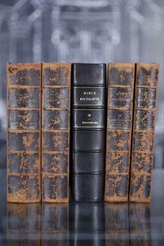 Polyglotten Bibel zum praktischen handgebrauch (Bible polyglotte)