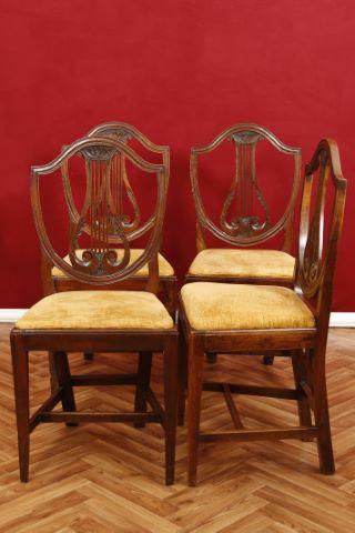 Suite de 4 chaises lyre
