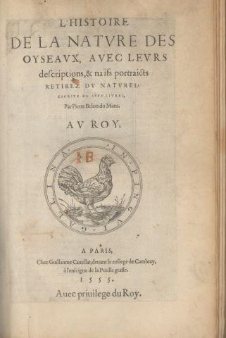 L'Histoire de la nature des oyseaux, avec leurs descriptions, & naïfs portraicts retirez du nature