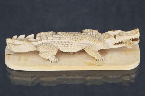 Crocodile dévorant un serpent