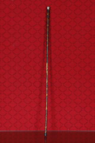 Canne flûte
