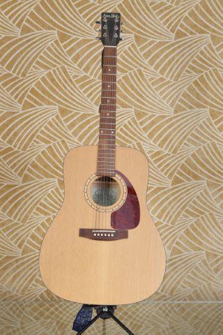 Guitare Folk Western model S&P 6 cédar